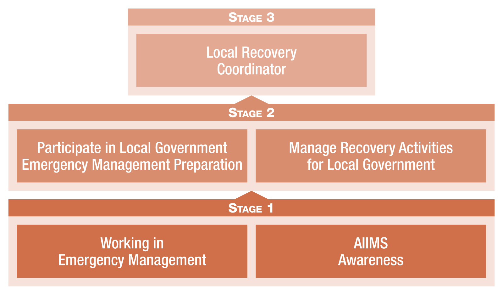 Emergency Management Pathway