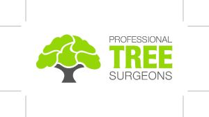 Professional Tree Surgeons